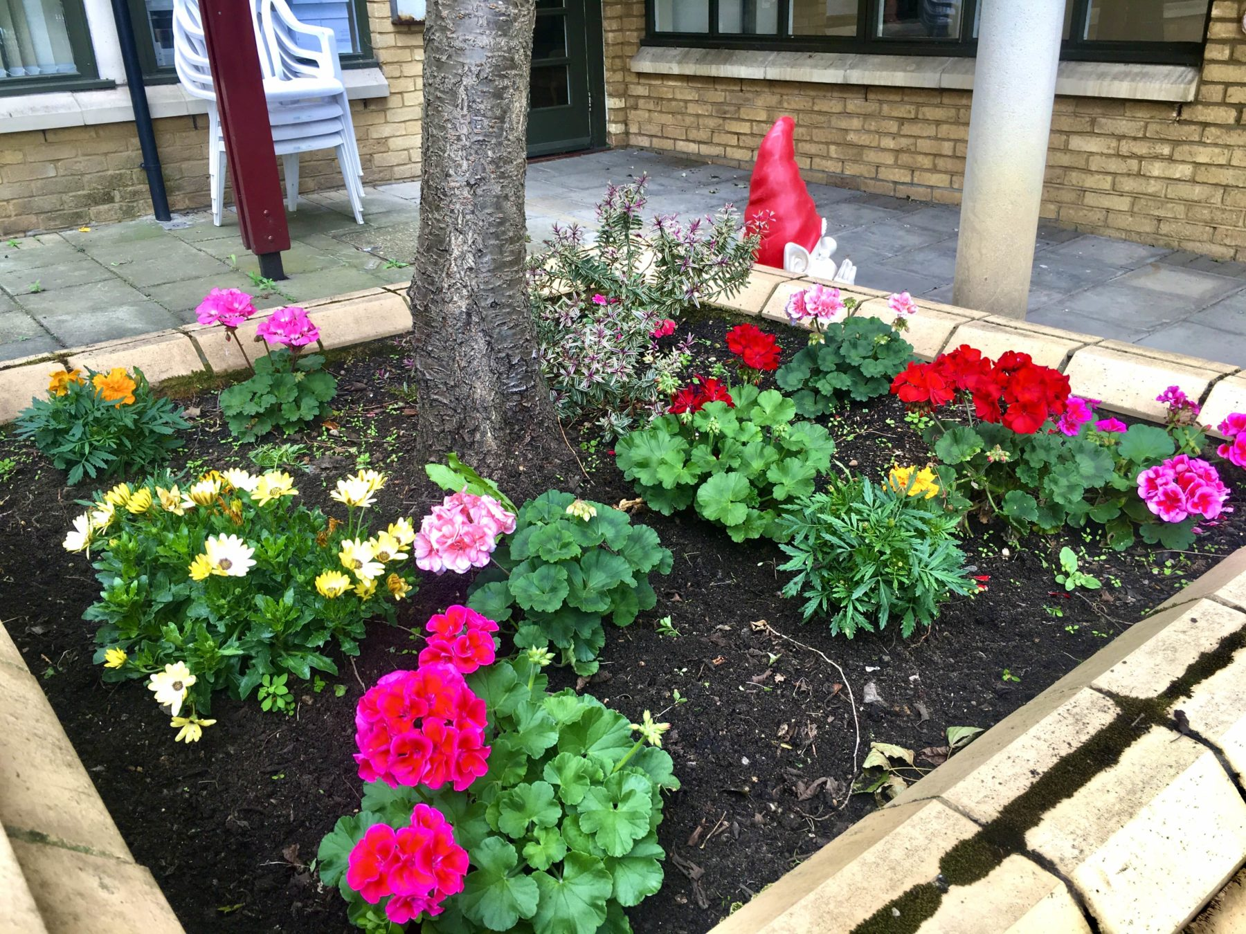 Gold Care Homes, Garden Competition
